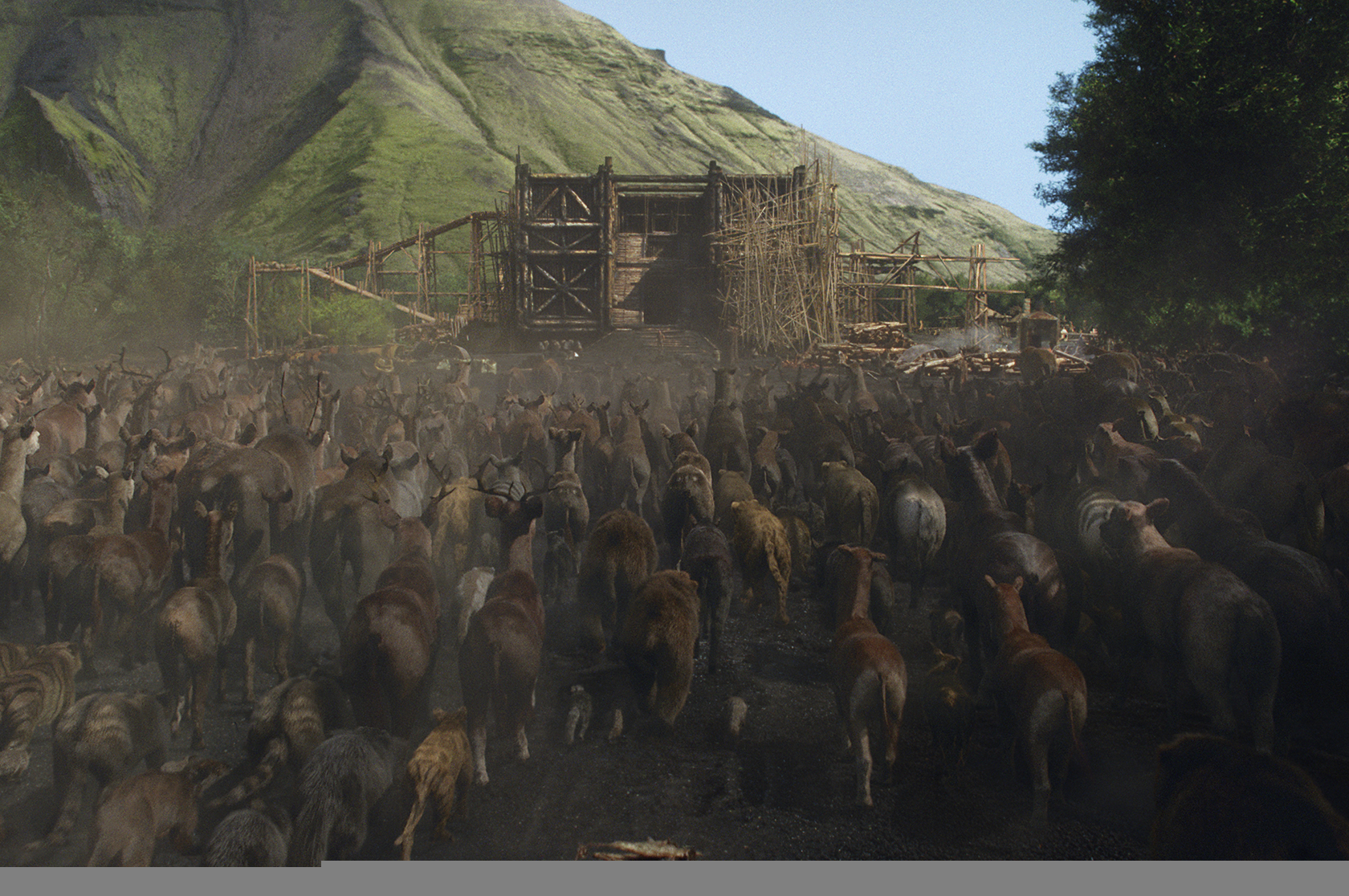 Animals enter the Ark in NOAH, from Paramount Pictures and Regency Enterprises..N-FX-054